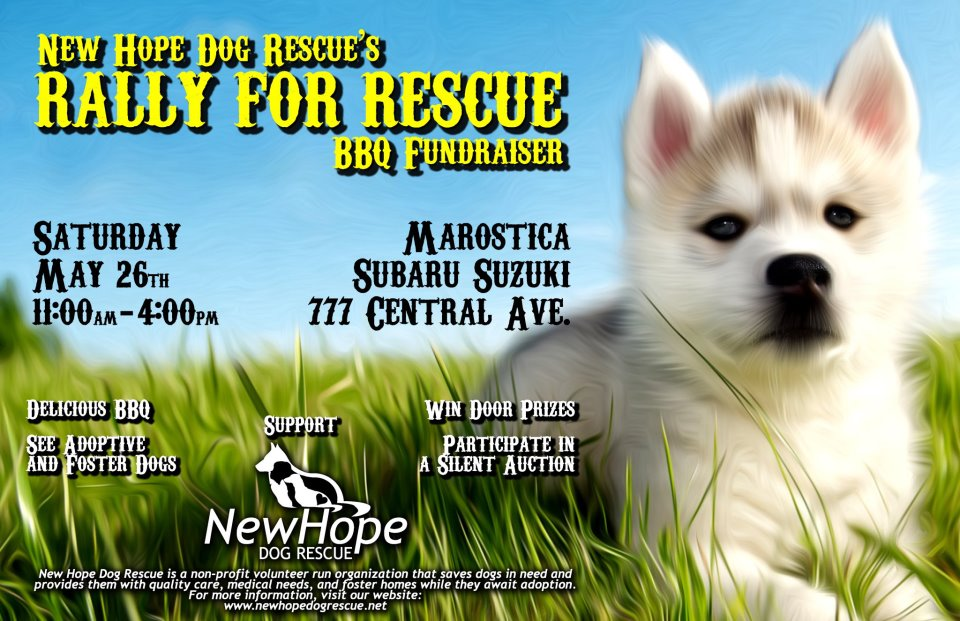 New Hope Dog Rescue's Rally for Rescue BBQ Fundraiser