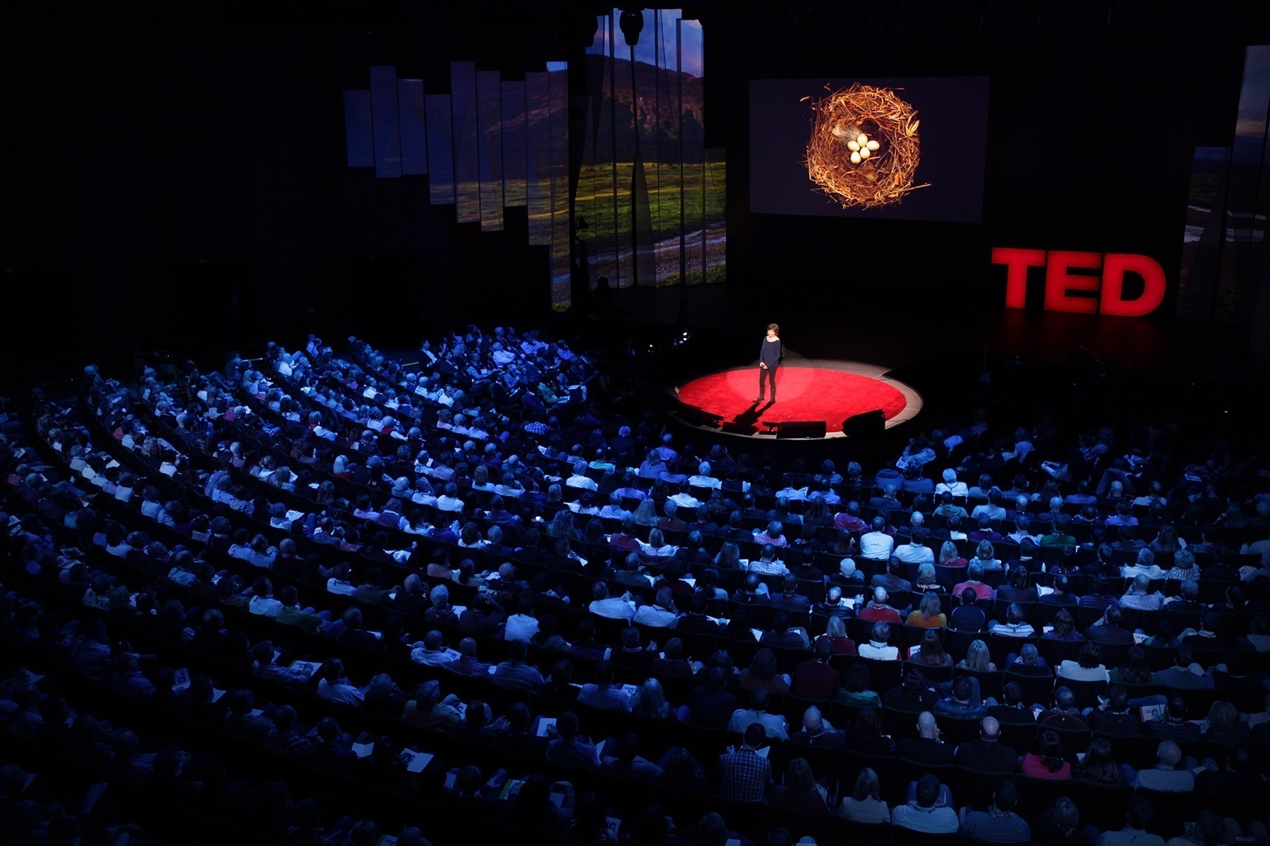 A Disappointing Opening Night — The TED2016 Experience