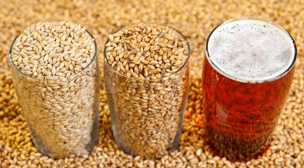 Sustainable Beer—Canada Malting Thunder Bay Cuts Energy Costs By 60%