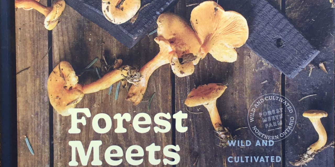 Forest Meets Farm – Roots to Harvest