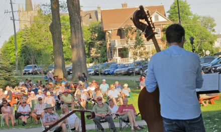 Waverley Park Concert Series